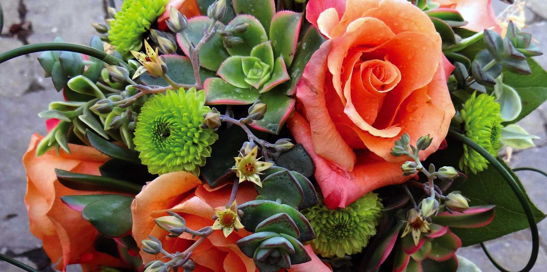 admin | Perennial Gardens, Inc.